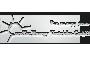 ecoTec - Sponsor der Burghausen Crusaders